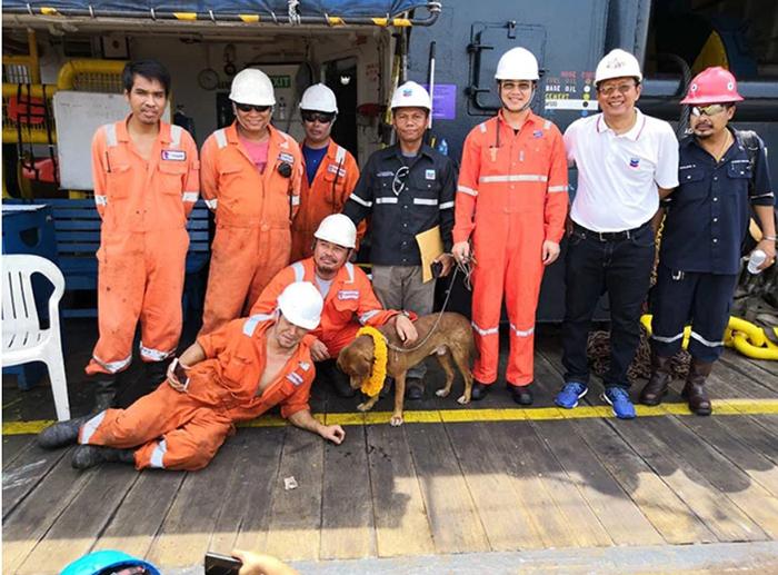 Спасенная собака вместе со своими спасителями.