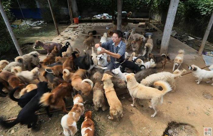 Хранитель собак Чжоу Юсонг.