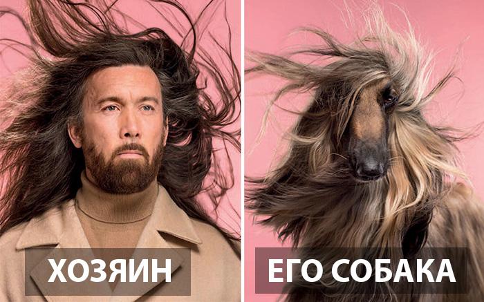 Похожи ли вы на свою собаку?
