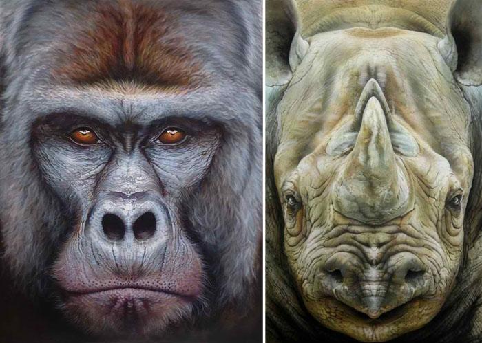 Портреты животных британского художника Эйана Хиггинса Джонезиса.