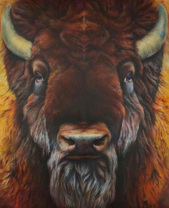 Bison Bison Athabascae - лесной бизон смотрит прямо в глаза зрителям.
