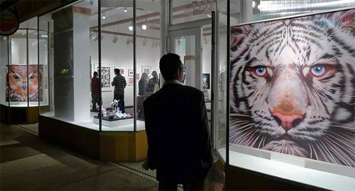 Животные на картинах Эйана встречаются взглядом со зрителями.