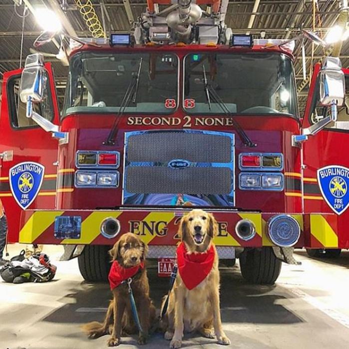 Финн побывал на пожарной станции, где познакомился с замечательными людьми.