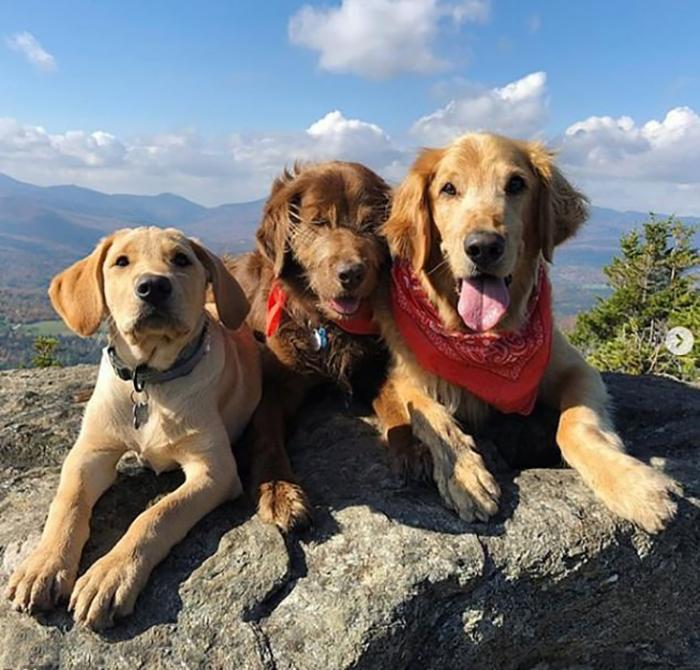 Финн во время похода со своими друзьями.
