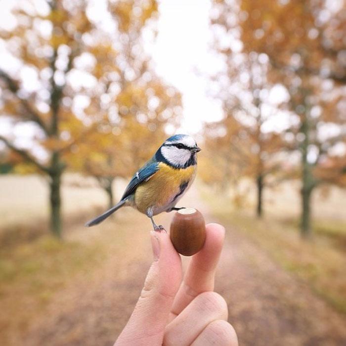 Осенний кадр.