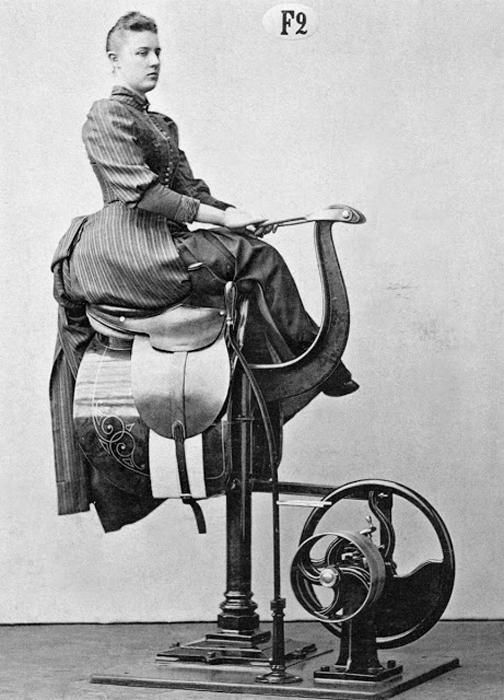 Для тех, кто не может - или не решается - оседлать лошадь, этот аппарат поможет ощутить те же ощущения, что и всадник.