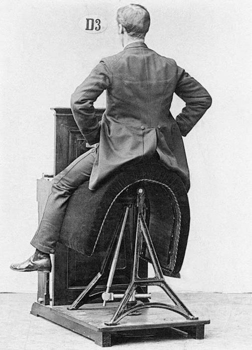 Идея этого аппарат заключается в удерживании своего торса неподвижно, пока седло пребывает в движении. Сегодня эту функцию выполняет шар для фитнесса.