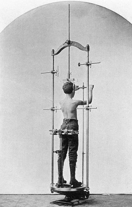 Еще один измерительный аппарат, способный измерить вас по контурам торса.