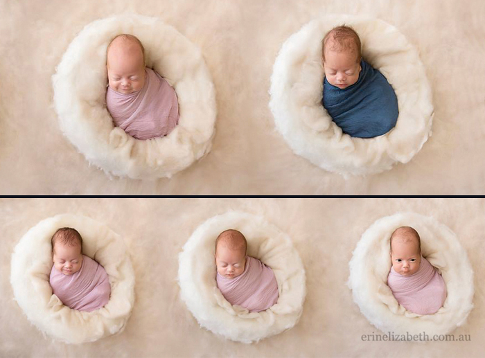 Пять малышей - четыре девочки и один мальчик.  Фото: Erin Elizabeth Photograpy.
