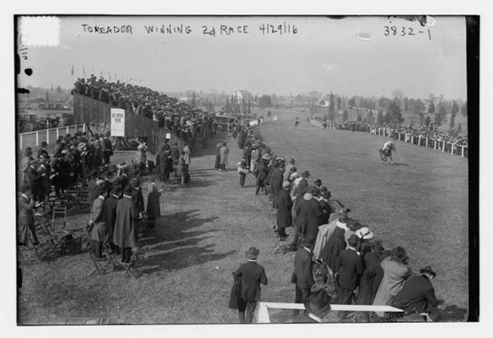 Белмонт парк в 1916 году.