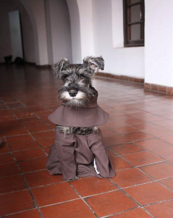 Для брата Биготона пошили специальную одежду.