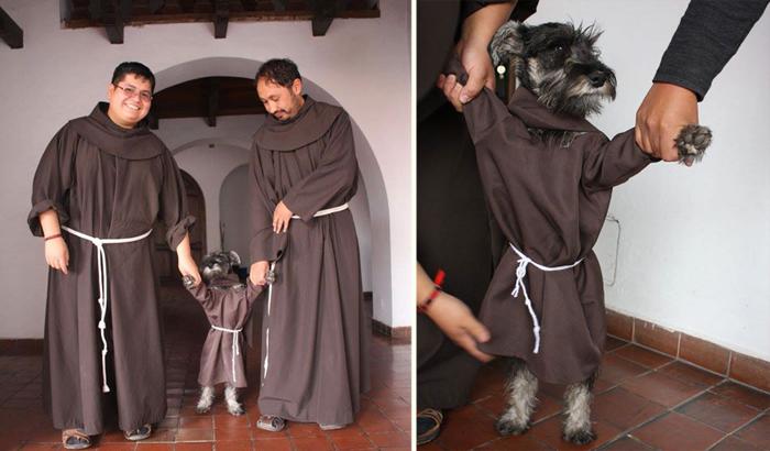 Брат Биготон - самый необычный монах.