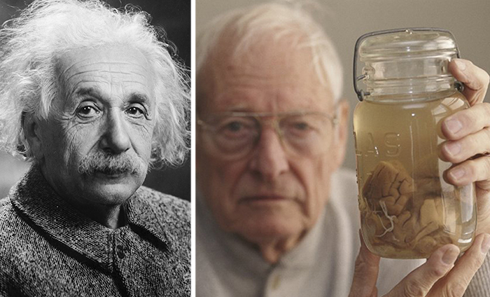 Как украли мозг Ðйнштейна.