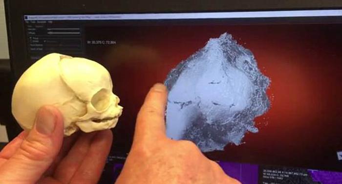 С помощью высокоточного сканера удалось выяснить новые подробности о мумии.