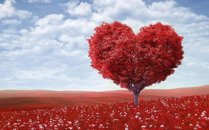 Сейчас символом сердца обозначают также и любовь, и жизнь.