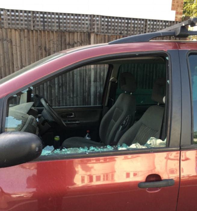 Чтобы спасти собаку, людям пришлось разбить стекло.