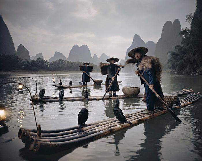 Рыбаки Йанг Шуо, использующие тренированных бакланов для рыболовства. Китай.