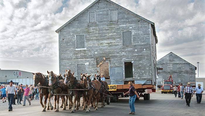 2016 год, перемещение дома с помощью лошадей.