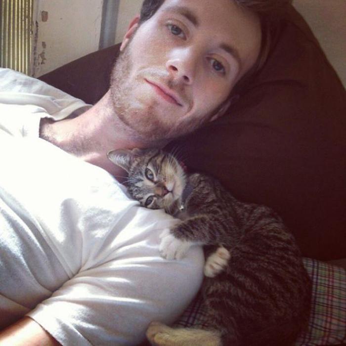 Кошка - это уют.