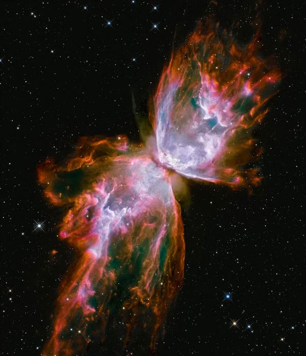 Позиция: 20h 27m, +37°, 22', расстояние от Земли: 2,000 св.лет, прибор/год: Subaru, Telescope, 1999; WFC3/UVIS, WFC3/IR, 2011.