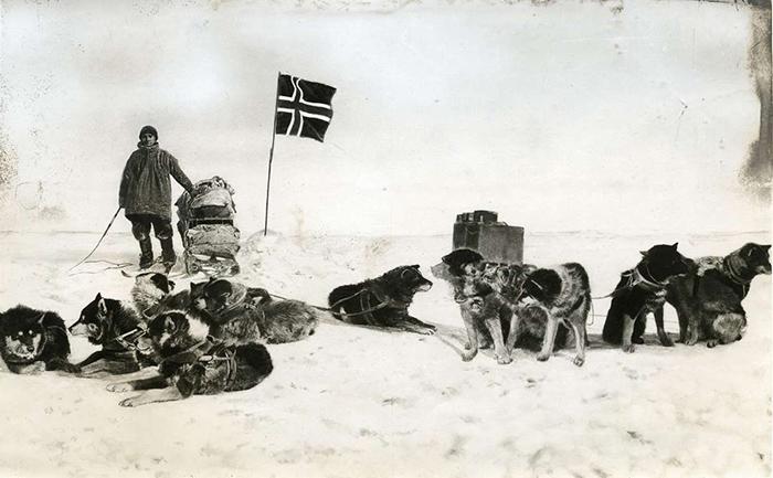 Норвежская экспедиция во главе с Роальдом Амундсеном.
