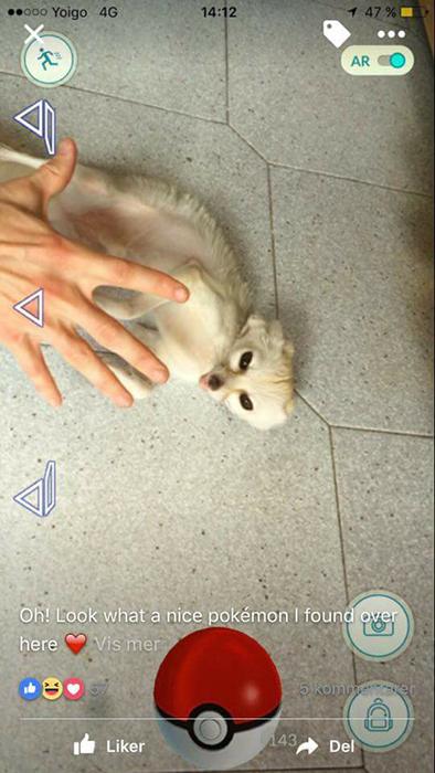 Кадр из видео, выложенного Соней.