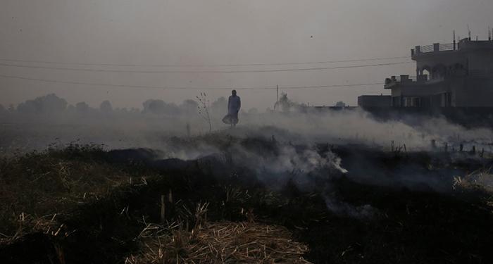 Крестьянин идет сквозь горящие поля - в Индии часто намеренно поджигают остатки урожая.