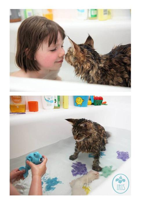 Водные процедуры Айрис проходят тоже вместе с Тулой.