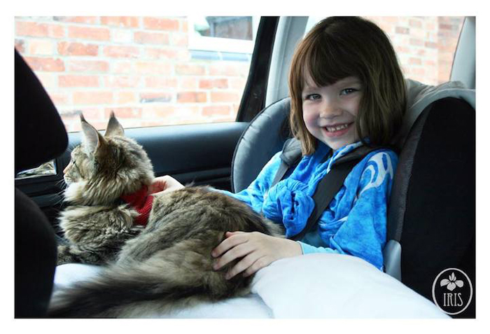 С появлением кошки у девочки начались значительные улучшения.
