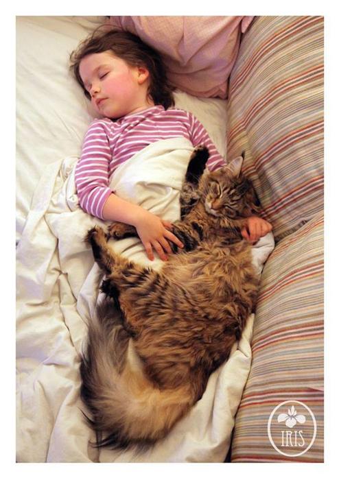 Повзрослевная Тула и спящая Айрис Грейс.