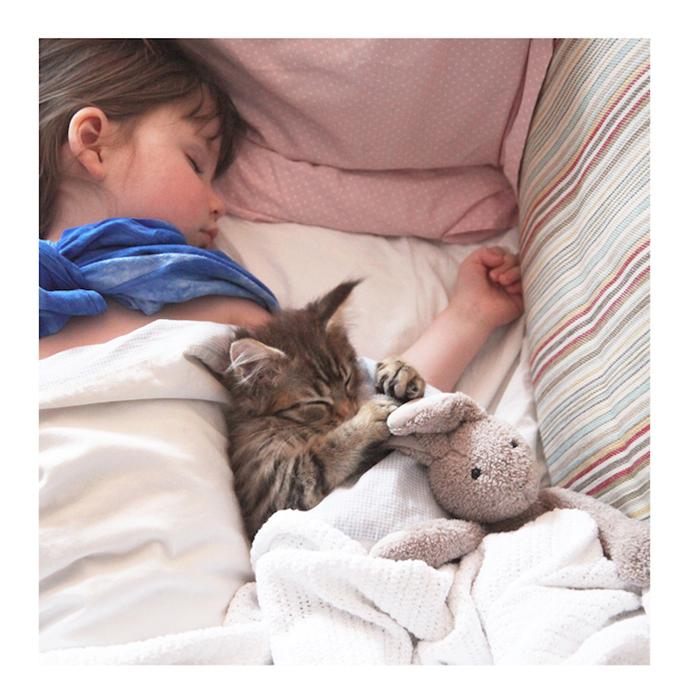 Нежная дружба девочки и кошки.