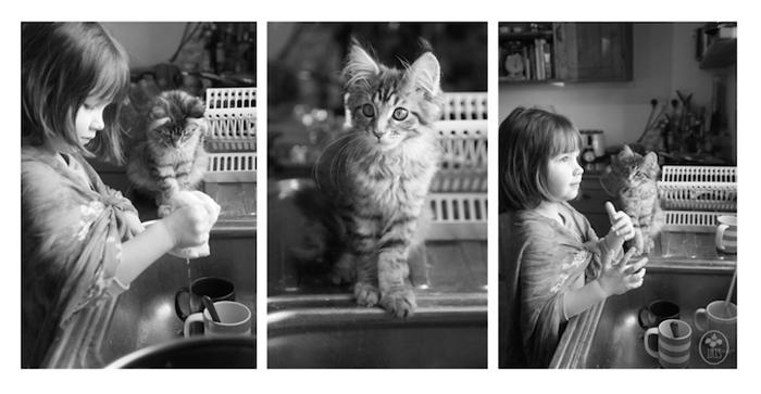 Мейн-кун кошка и любящая ее девочка.