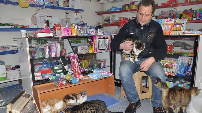 Сельчук Байал и бездомные кошки.