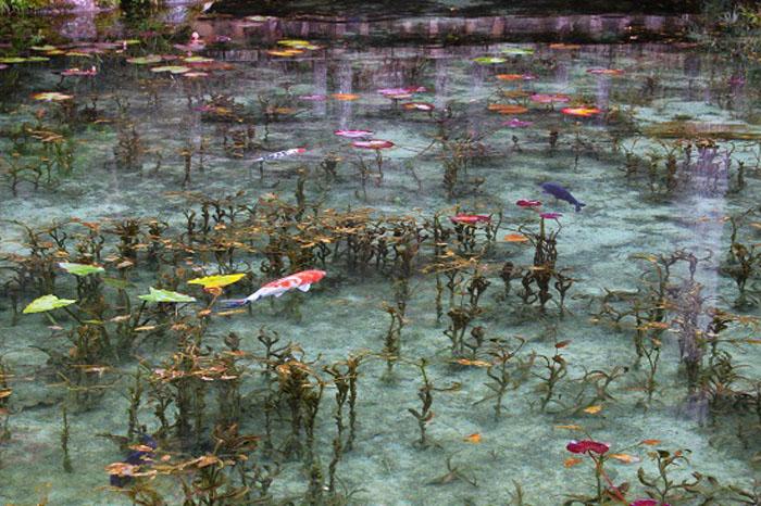 Безымянный пруд в горах Японии.