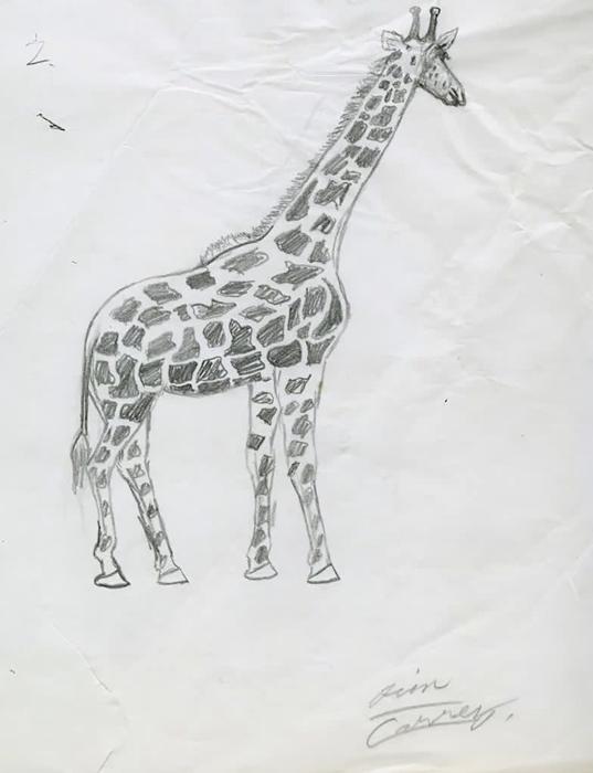 Большую часть жизни Джим рисовал карандашом.