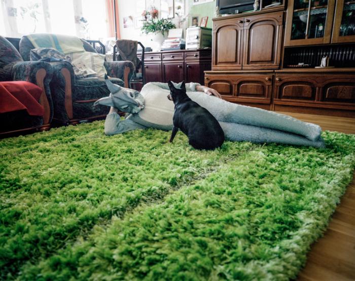Заяц на ковре.