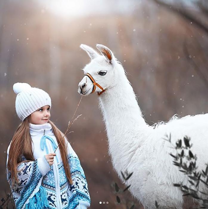 Фотография Анастасии Князевой с альпакой.  Instagram anna_knyazeva_official.
