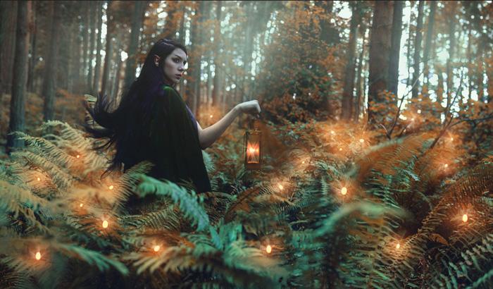 В волшебном лесу.
