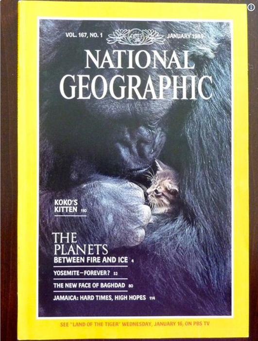 Обложка National Geographic с фотографией Коко.