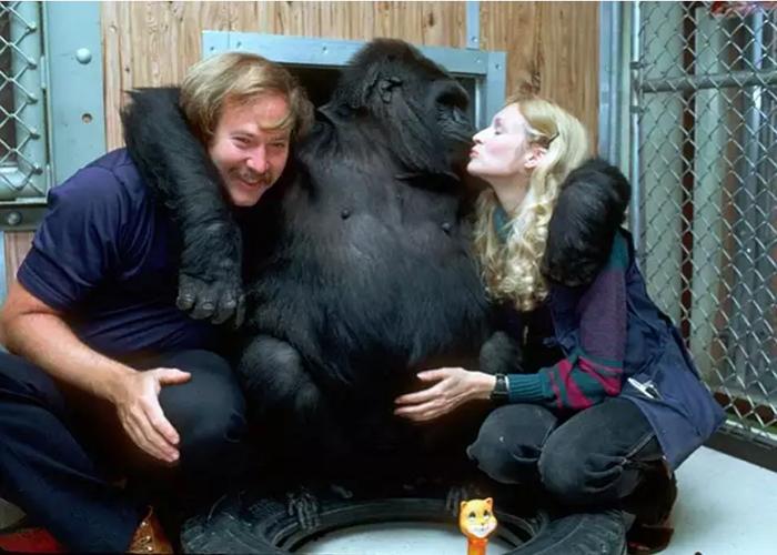 Коко обнимает фотографа Рона Кона и Фрэнсис Паттерсон.