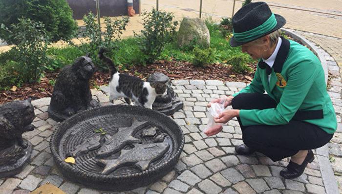 В обязанности Светланы входит забота о котах в парке.