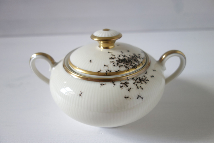 Чайный сервиз и немного муравьев впридачу.
