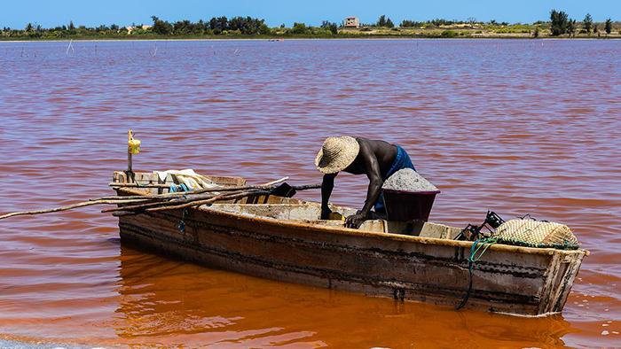 Розовое озеро в Сенегале.