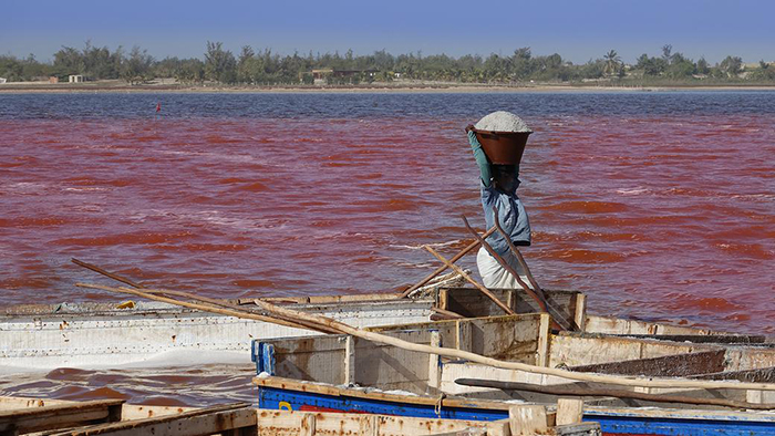 Розовые воды озера Ретба.