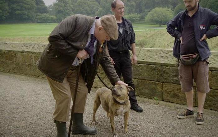 В новейшей части «Трансформеров» сняли самую одинокую собаку вмире