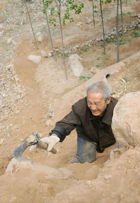 Сажать деревья на склонах оказалось для Ма Сансяо трудной, но все же выполнимой задачей.