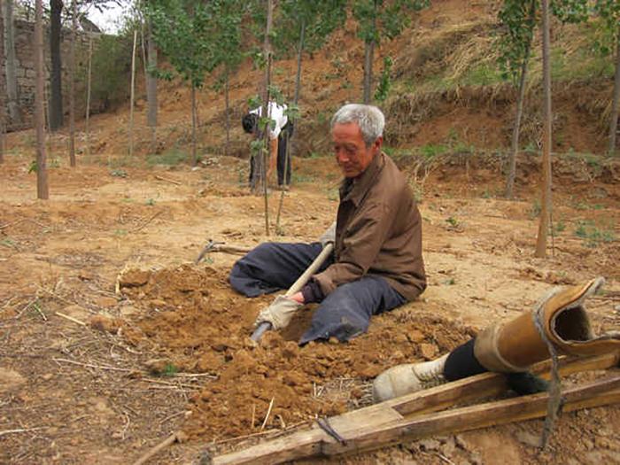 Для пенсионера-ветерана его роща стала единственным занятием.