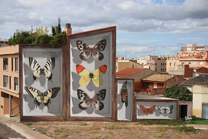 Бабочи Арагона. Сарагоса, Испания. Автор: Mantra.