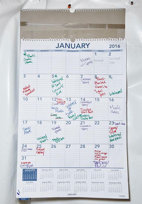 Расписание сестер. Фото: Shaughn Crawford/John DuBois.