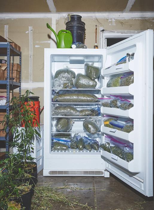 Запасы марихуаны. Фото: Shaughn Crawford/John DuBois.